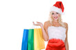 beauty girl in santa hat with color bag