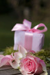 Gift with bow and pink rose