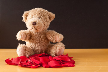 Teddy Bear on Roses ( Space for Text )