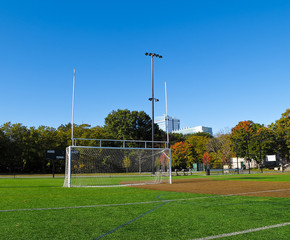 Combined Soccer and Football Goal Posts