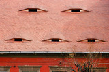 Roofs eyes in Sibiu, Transylvania, Romania poster