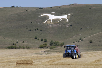 Tractor under White Chalk Horse. Wiltshire. England