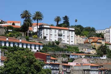Portugal, centre historique de Porto