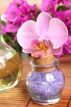 sel violette