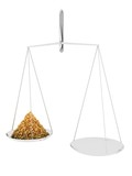 Scales with granules poster