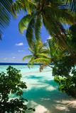 Fototapety Tropical Paradise at Maldives