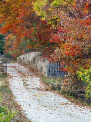 Autumn Country Lane with Hay Bales, Fence and Gate