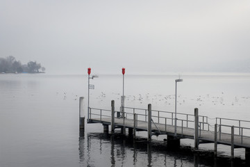 Foggy landscape in Zurich's lake, Switzerland
