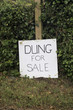 Dung for sale