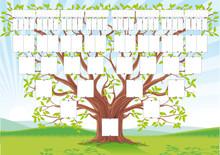 Drzewo genealogiczne - 10 pokoleń