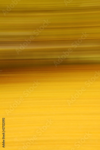 abstract colored forest in autumn time