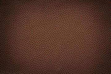 Football Texture