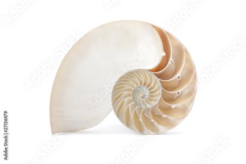 Leinwandbild Motiv Nautilus shell and famous geometric pattern