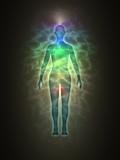 Human energy body, aura, chakra, energy poster