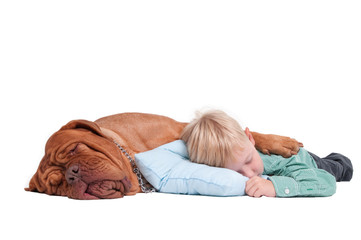 Boy and dog asleep on the floor