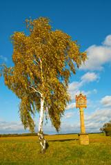 Herbst Baum Stimmung