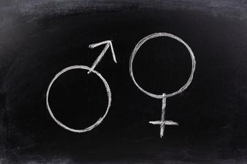 Gender synmols drawn on a blackboard