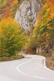 Mountain road during the autumn, Tara NP, Montenegro poster