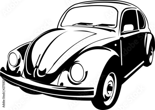 three quarter view of a beetle