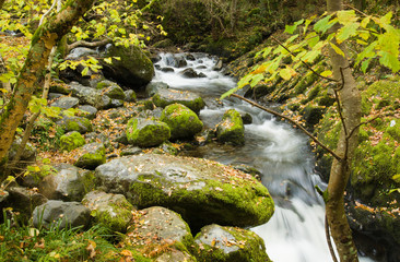 Aira Beck, river above famous Aira Force waterfall