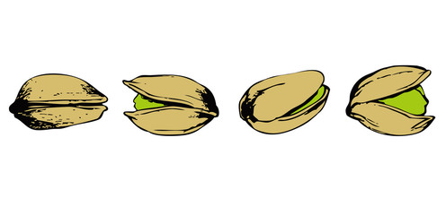 set of pistachio