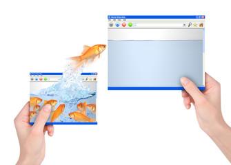Leader Goldfish Jumping to Big Website