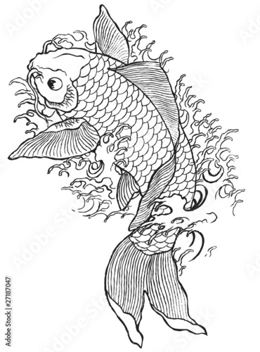 Hand Drawn Koi Fish