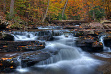 Kitchen Creek Cascades In Autumn