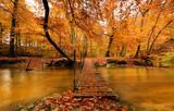 Fototapety Autumn bridge