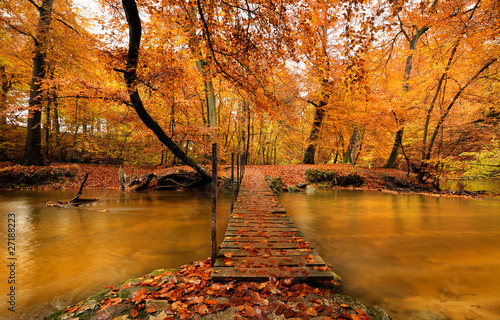 Spoed canvasdoek 2cm dik Rivier Autumn bridge