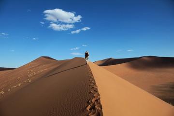 Düne, Sossusvlei, Namibia