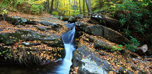Autumn creek on rocks with foliage panorama