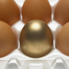 close up of one gold and five brown eggs in white egg box