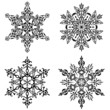 Ornament - Decorative designs - Set