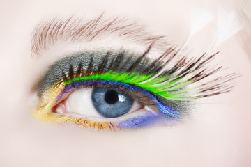 macro eye with false lashes