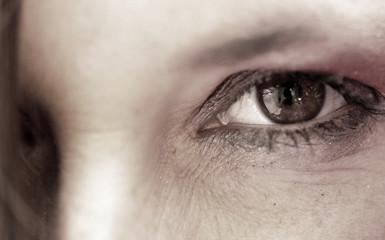 Auge im Detail