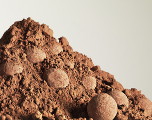 heap of cocoa powder and truffles