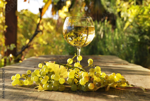 Glass of white wine. Lavaux region, Switzerland © HappyAlex