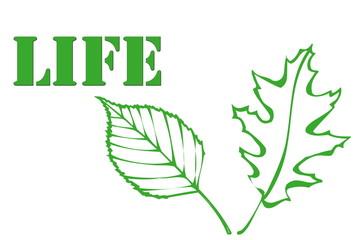 foglie di vita