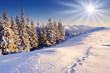 Fototapeten,hintergrund,schöner,schönheit,weihnachten