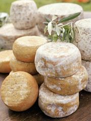 Assortiment de fromages corses