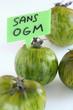 Tomates vertes Green Zebra bio