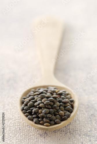 Cuillère de lentilles
