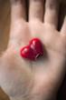 Smarties en forme de coeur croqué