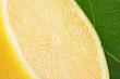 Zitrone im Profil II
