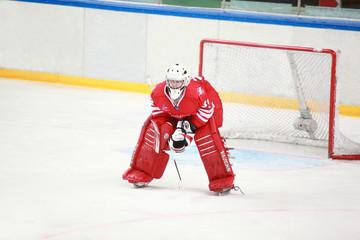 Goalkeeper on  hockey match