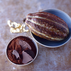 dish of chocolate and cocoa bean