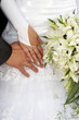 hands of the newlyweds