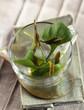 Salad and tea leaves