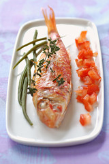 thyme-grilled mullet with raw diced tomato and French beans